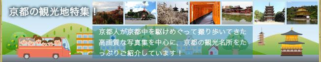 「京都の観光地特集!」 京都人が京都中を駆けめぐって撮り歩いてきた高画質な写真集を中心に、京都の観光名所をたっぷりご案内しています!