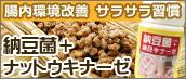 腸内環境改善 サラサラ習慣 納豆菌+ナットウキナーゼ